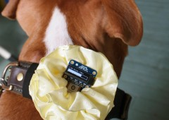 GPS Dog Collar – by Adafruit